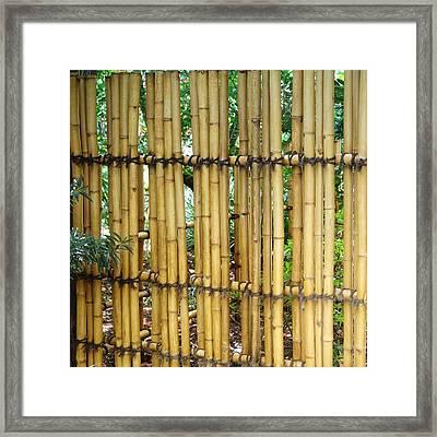 Bamboo Gate Framed Print