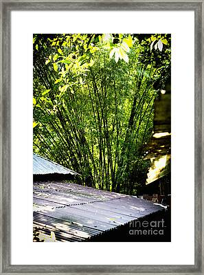 Bamboo Shade Framed Print