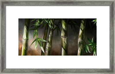 Bamboo Stalks Framed Print by Steve Goad