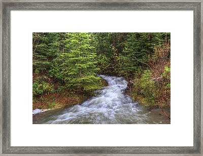 Banff Spring Creek Flow Framed Print by Sam Amato
