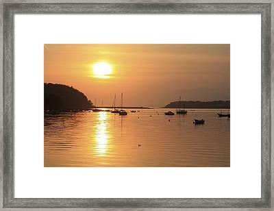 Bantry Bay, Bantry, Co Cork, Ireland Framed Print by Peter Zoeller