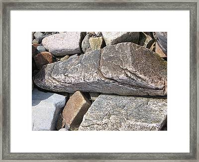 Bar Harbor Maine Rocks Framed Print by J R Baldini MPhotog Cr
