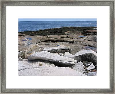 Bar Harbor Seashore Framed Print by J R Baldini M Photog Cr