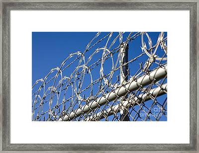 Barbed Wire And Chain Link Fence Framed Print by Paul Edmondson