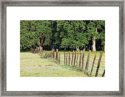 Barbed Wire Fence In Disrepair Separating Fields Framed Print