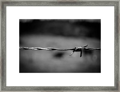 Barbed Wire Framed Print by Raimonds Raginskis