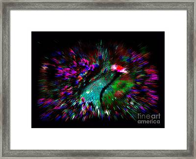 Bardo Framed Print by Susanne Still