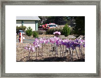 Bare Naked Ladies With Fire Hydrant Framed Print