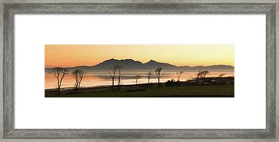 Bare Trees At Coast Framed Print by Image by Peter Ribbeck