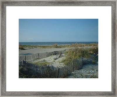 Barely Fenced Framed Print