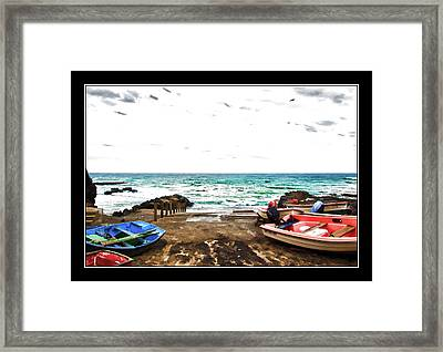 Bark Jandia Framed Print by David Armas