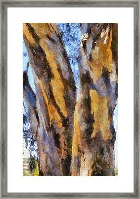 Framed Print featuring the digital art Bark by Roberto Gagliardi