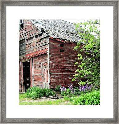 Barn-10 Framed Print by Todd Sherlock