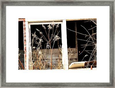 Barn-18 Framed Print by Todd Sherlock