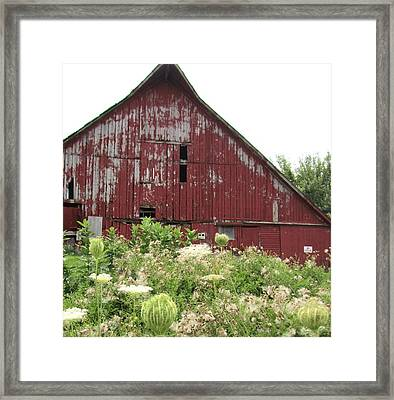 Barn-25 Framed Print by Todd Sherlock