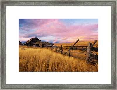 Barn And Field 2 Framed Print by Peter Olsen