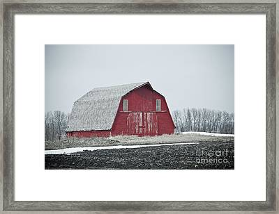 Barn Days Framed Print by Jason Lee