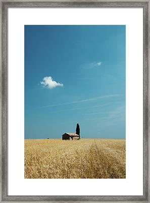 Barn In Crop Field Framed Print