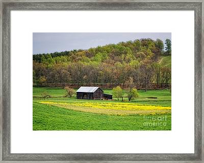 Barn In The Hollar Framed Print by Pamela Baker