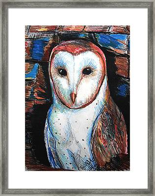 Barn Owl  Framed Print by Jon Baldwin  Art