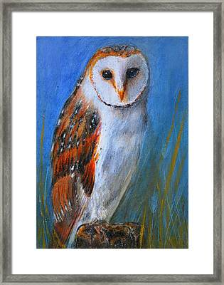 Framed Print featuring the painting Barn Owl by Lynn Hughes