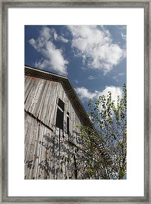 Barn To Be Wild Framed Print