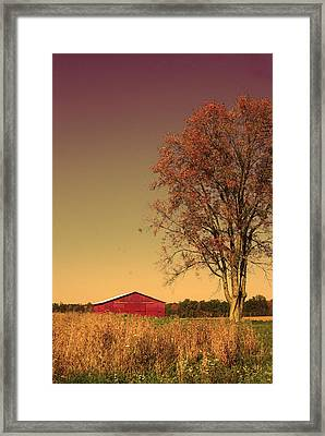 Barn Wood Framed Print