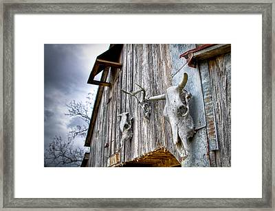 Barnstorm Framed Print by Pixel Perfect by Michael Moore