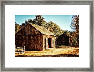 Barnyard Framed Print by Tricia Marchlik