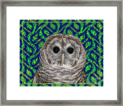 Barred Owl In A Fractal Tree Framed Print by Rose Santuci-Sofranko