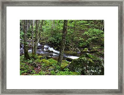 Barrenshe Run Framed Print by Thomas R Fletcher