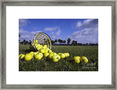 Basket Of Golf Balls Framed Print by Skip Nall