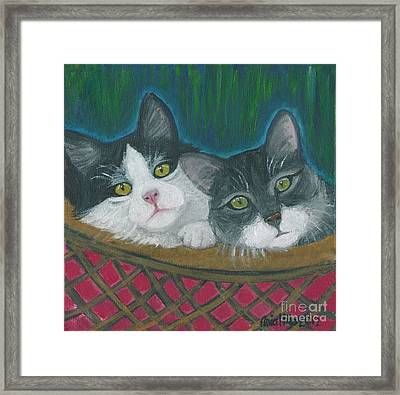 Basket Of Kitties Framed Print
