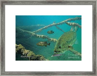 Bass Ambush Framed Print
