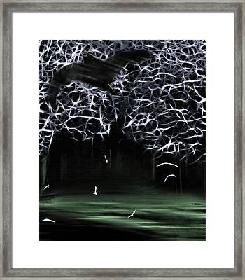 Bat Cave 2 Framed Print by Steve Ohlsen