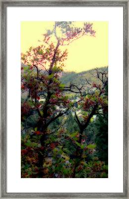 Bathe Me In Color Framed Print