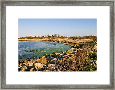 Bathed In Gold Framed Print by Michelle Wiarda