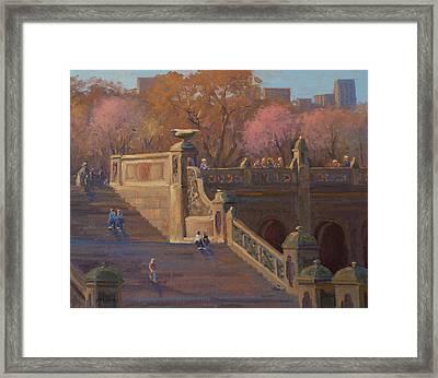 Bathesda Stairway Central Park Framed Print by Marianne Kuhn