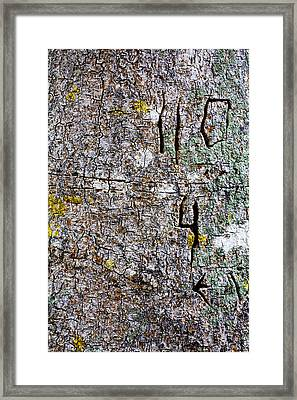 Battle Scars Of The Defensless Framed Print by Nicholas Evans