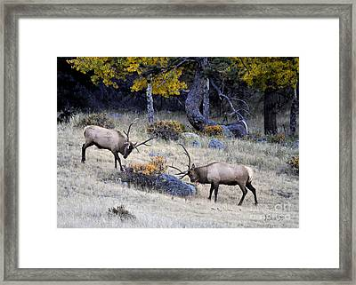 Framed Print featuring the photograph Battlefield Colorado by Nava Thompson