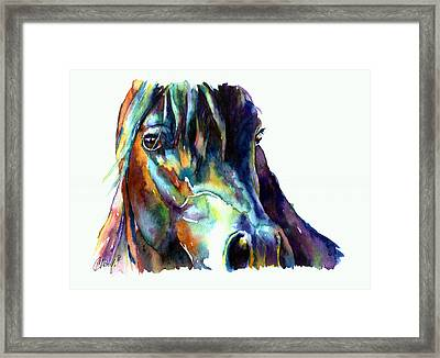 Bay Horse Portrait Framed Print by Christy  Freeman