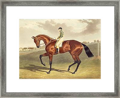Bay Middleton Winner Of The Derby In 1836 Framed Print by John Frederick Herring Snr