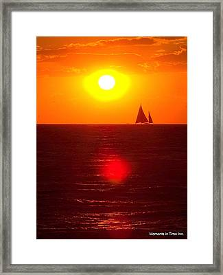 Bay Sunspike Framed Print