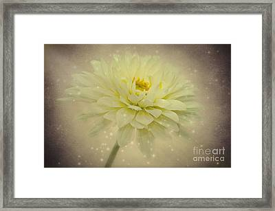 Be A Star Framed Print by Angela Doelling AD DESIGN Photo and PhotoArt