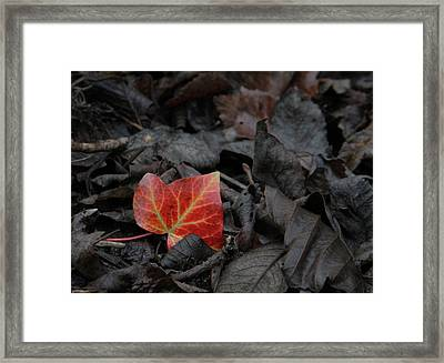 Be The One Framed Print by Odd Jeppesen