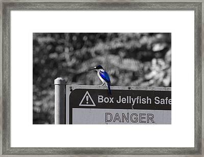 Be Warned Framed Print