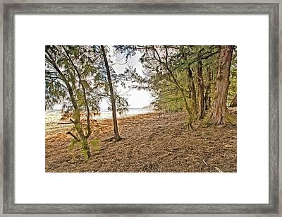 Beach At Kauai Framed Print by James Steele