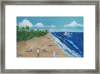 Beach Birds Framed Print by Paintings by Gretzky