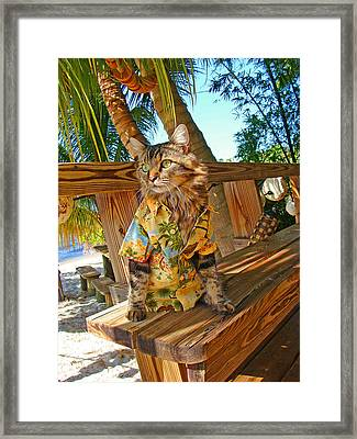 Beach Bum Chic Framed Print by Joann Biondi