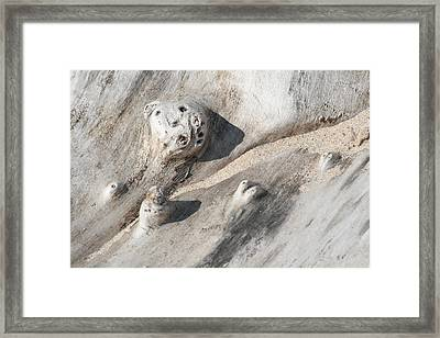 Framed Print featuring the photograph Beach Driftwood I by Peg Toliver